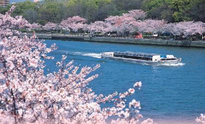 【日本大阪大川遊船一日券】大阪水上巴士 Aqua-Liner 遊船票
