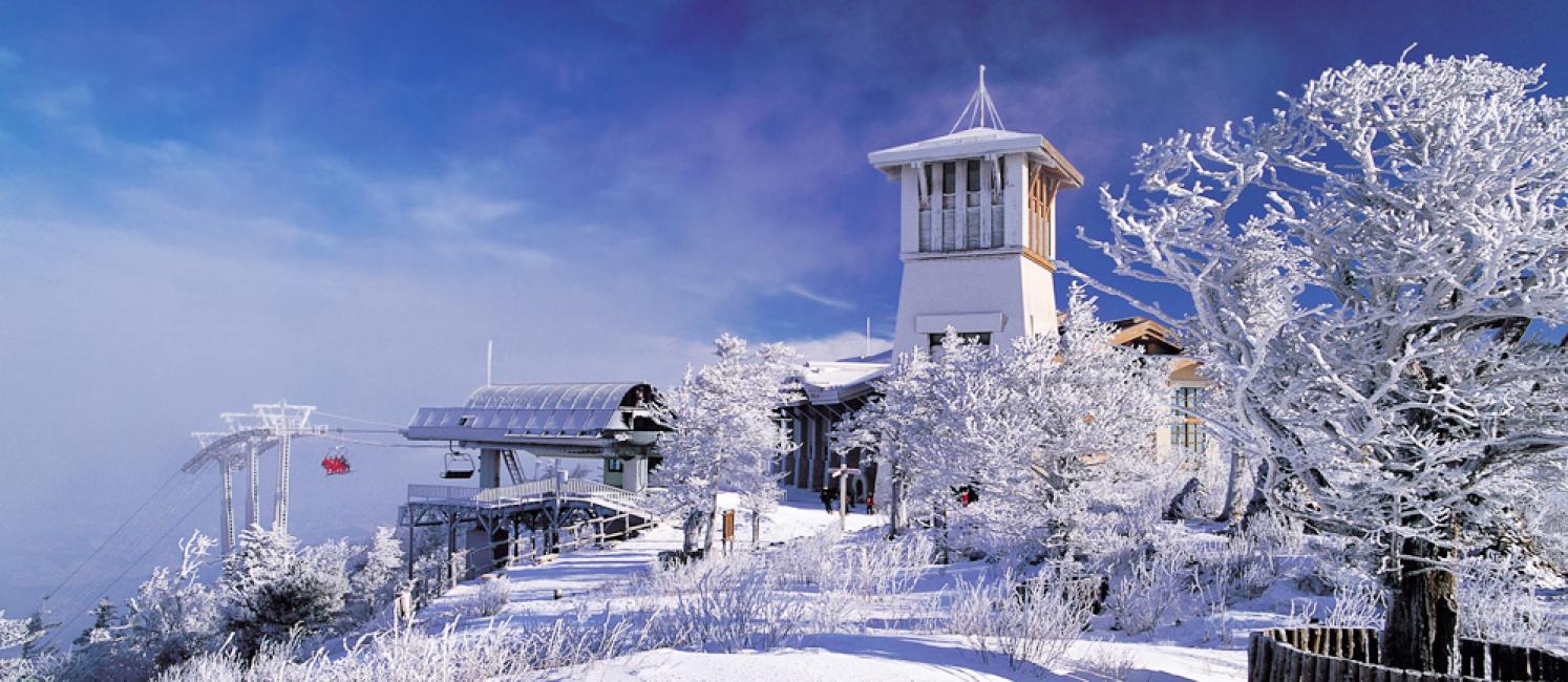 yongpyong ski resort self-guided ski tour from seoul - kkday