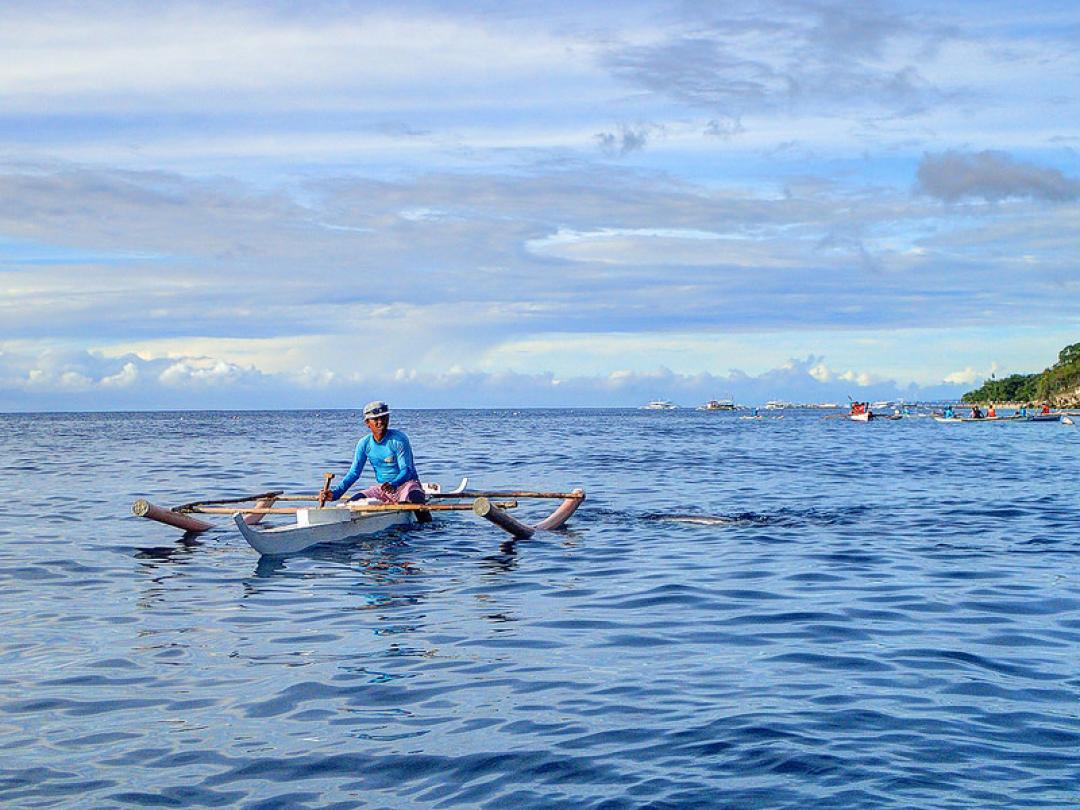 Day Tour from Cebu: Whale Shark Watching and Sumilon Island Image