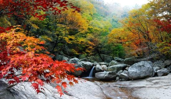 Mùa thu Hàn Quốc núi Seoraksan