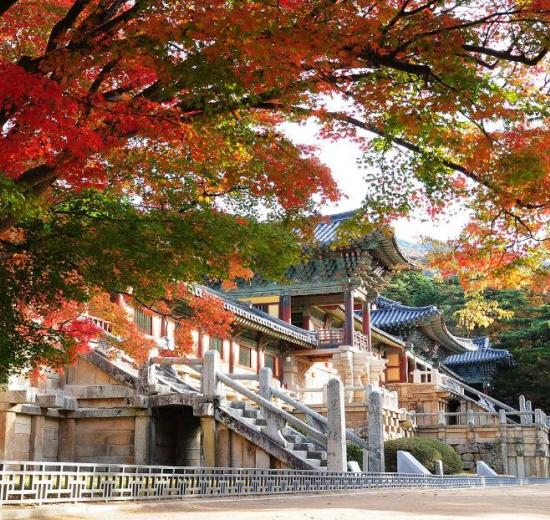 Gyeongju cố đô Hàn Quốc