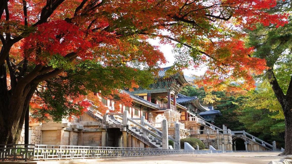 Image result for bulguksa temple autumn
