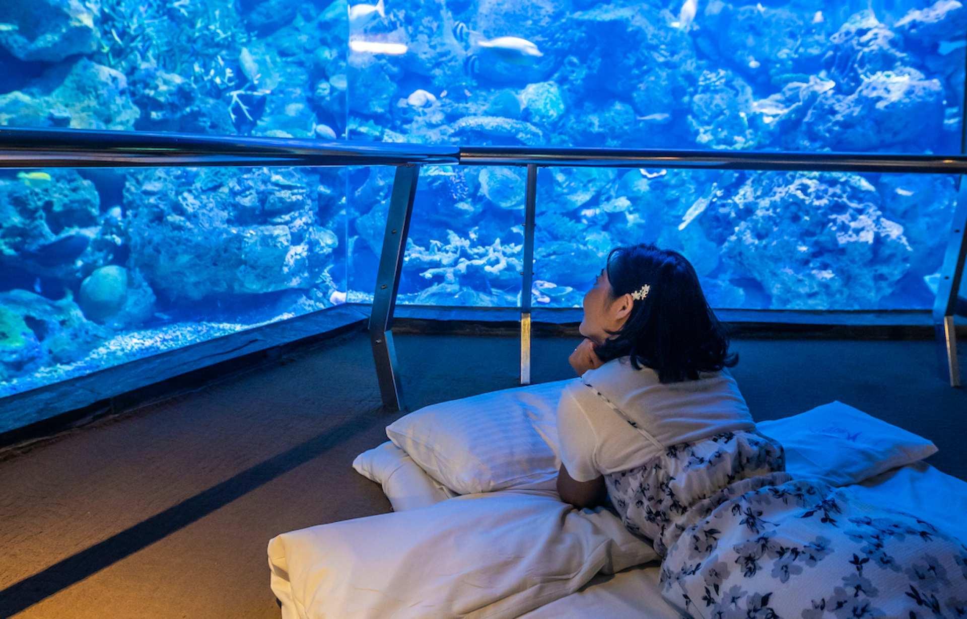 台湾最大の水族館・国立海洋生物博物館 宿泊プラン 墾丁(ケンティン)