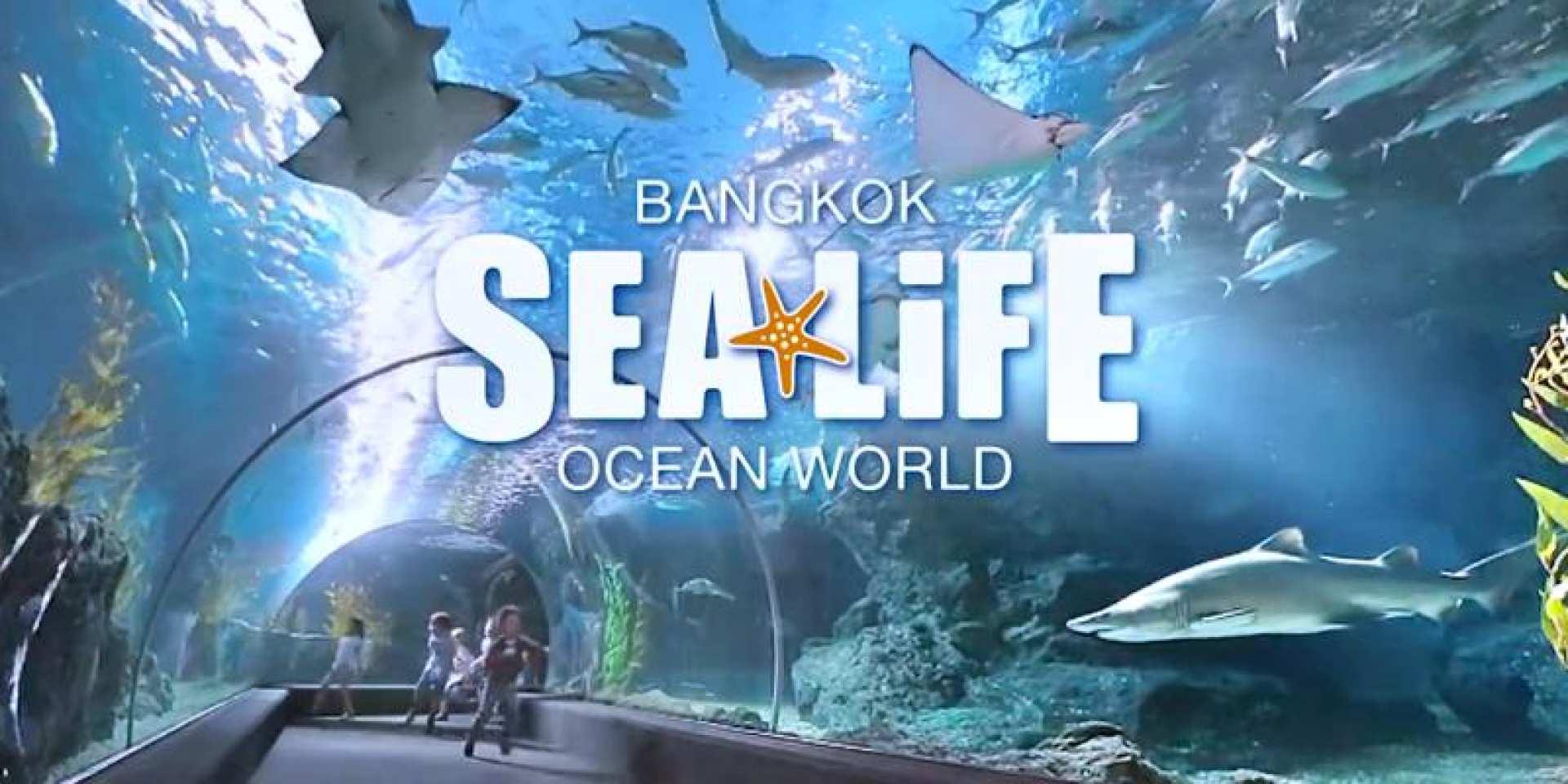 【タイ最大の水族館】シー・ライフ・バンコク・オーシャン・ワールド入場チケット