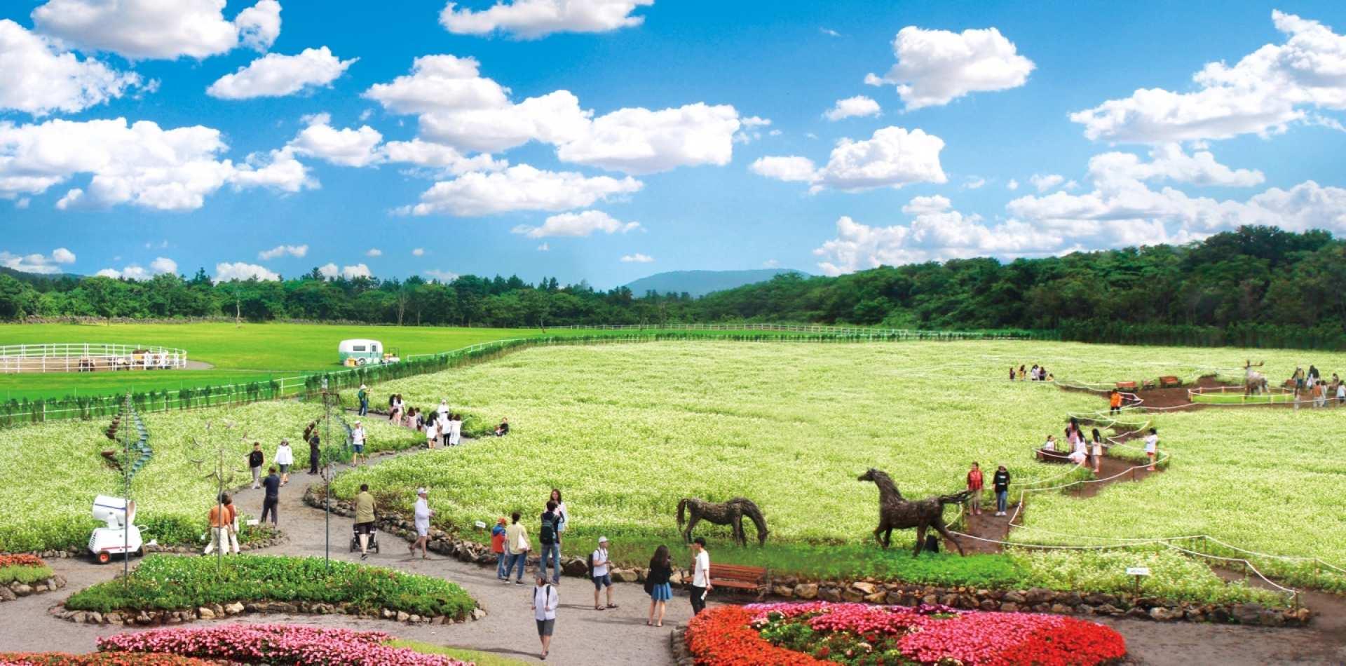 【濟州人氣景點一日遊】濟州牛島+ECOLAND 森林小火車生態公園+早晨微笑牧場冰淇淋製作體驗