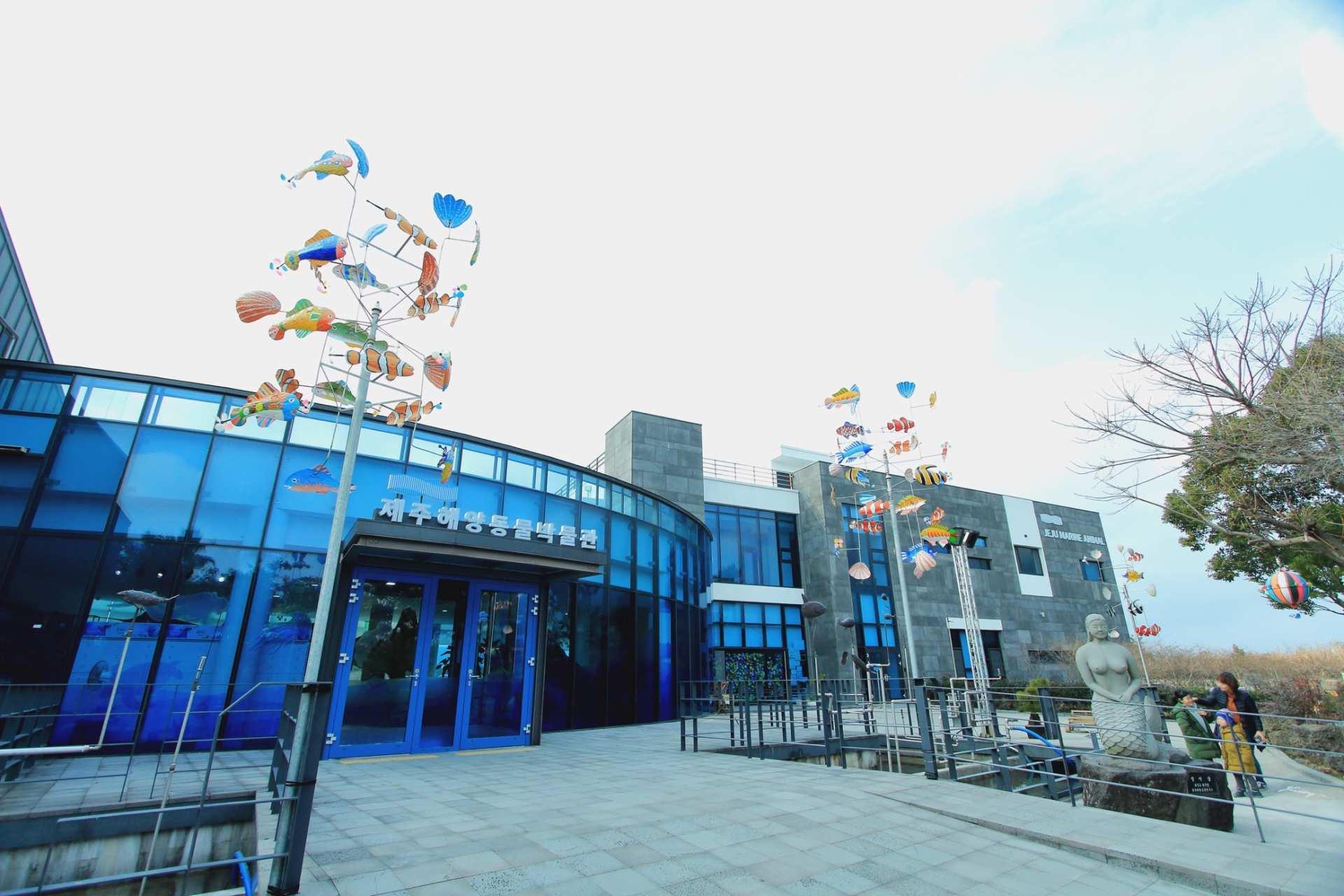 【濟州玩樂新天地】濟州海洋動物博物館門票