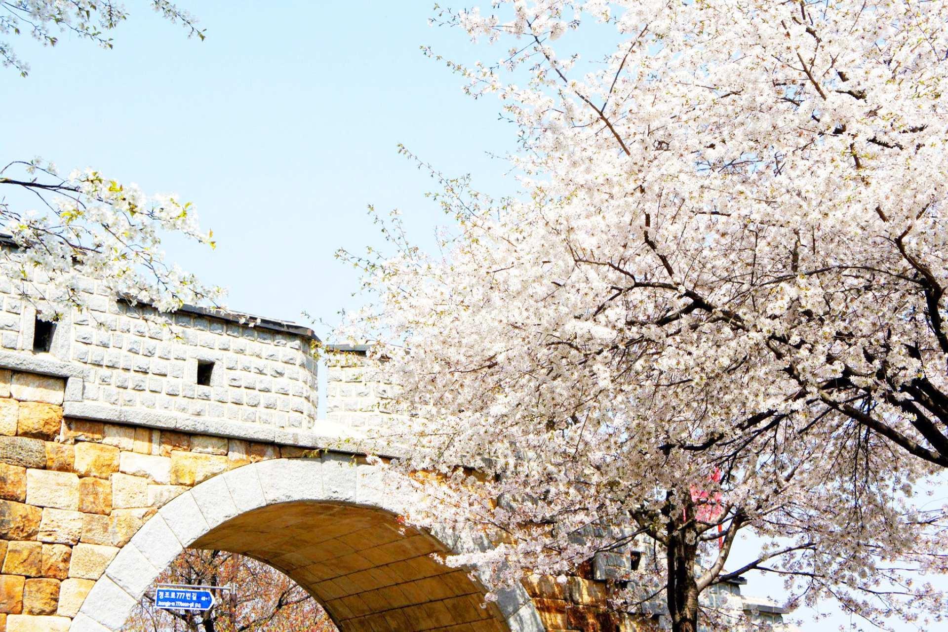 【首爾近郊一日遊】水原華城+傳統市場美食+熱氣球體驗
