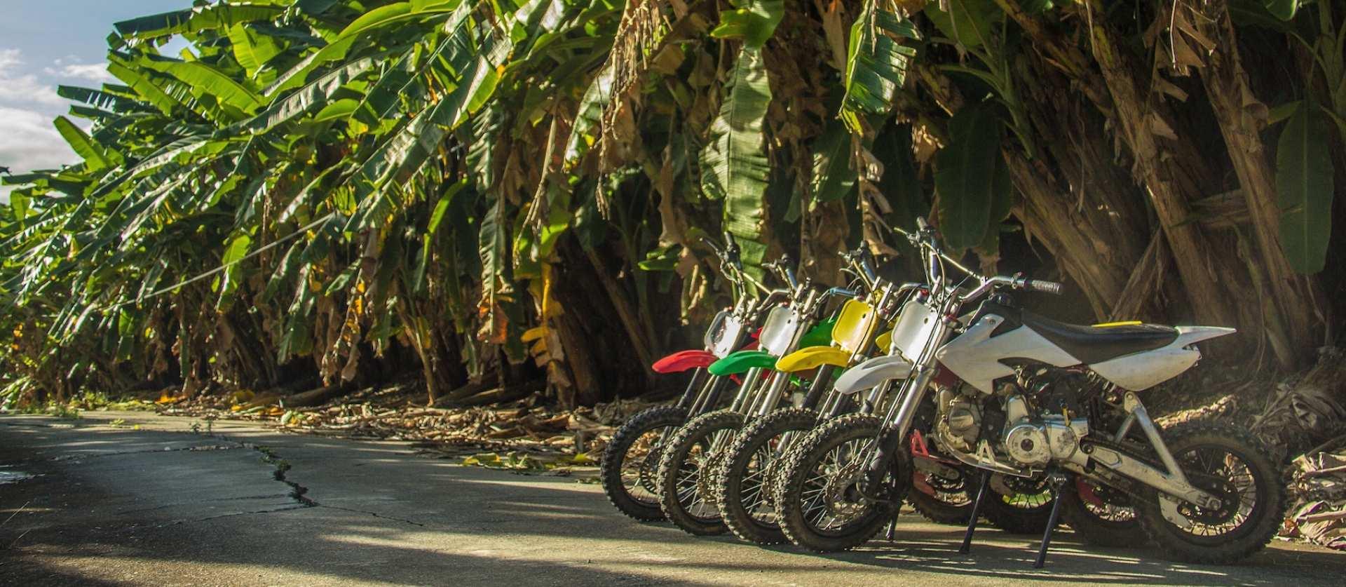 【花蓮香蕉林道越野騎】在香蕉林道秘境體驗越野機車