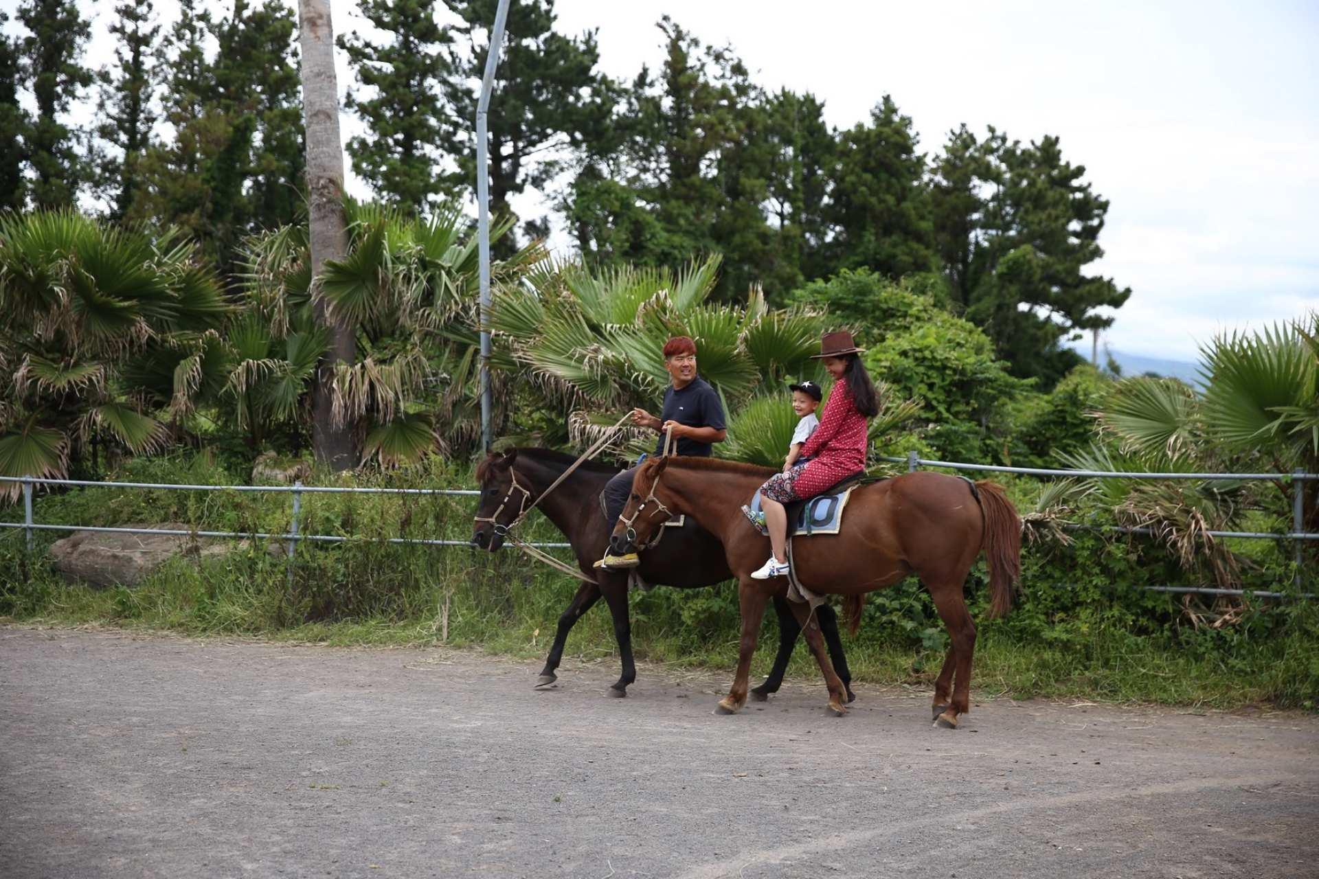 【濟州玩樂新天地】中文騎馬公園騎馬體驗