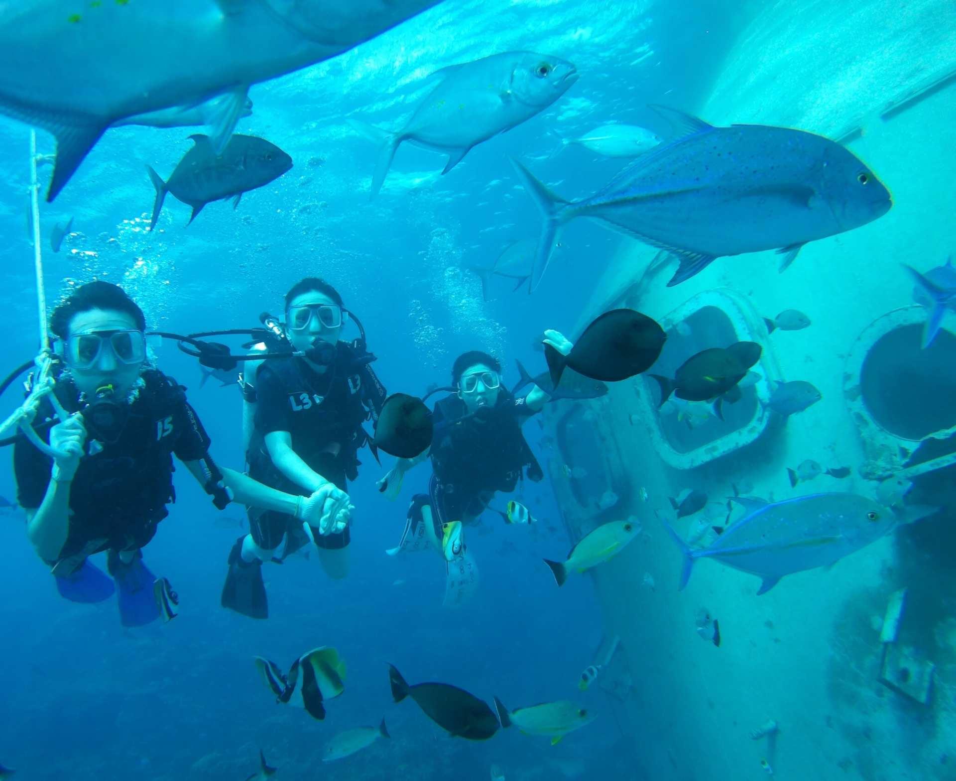 【海中の世界を探索】グアム島スクーバダイビング体験(ダイビングライセンス不要)