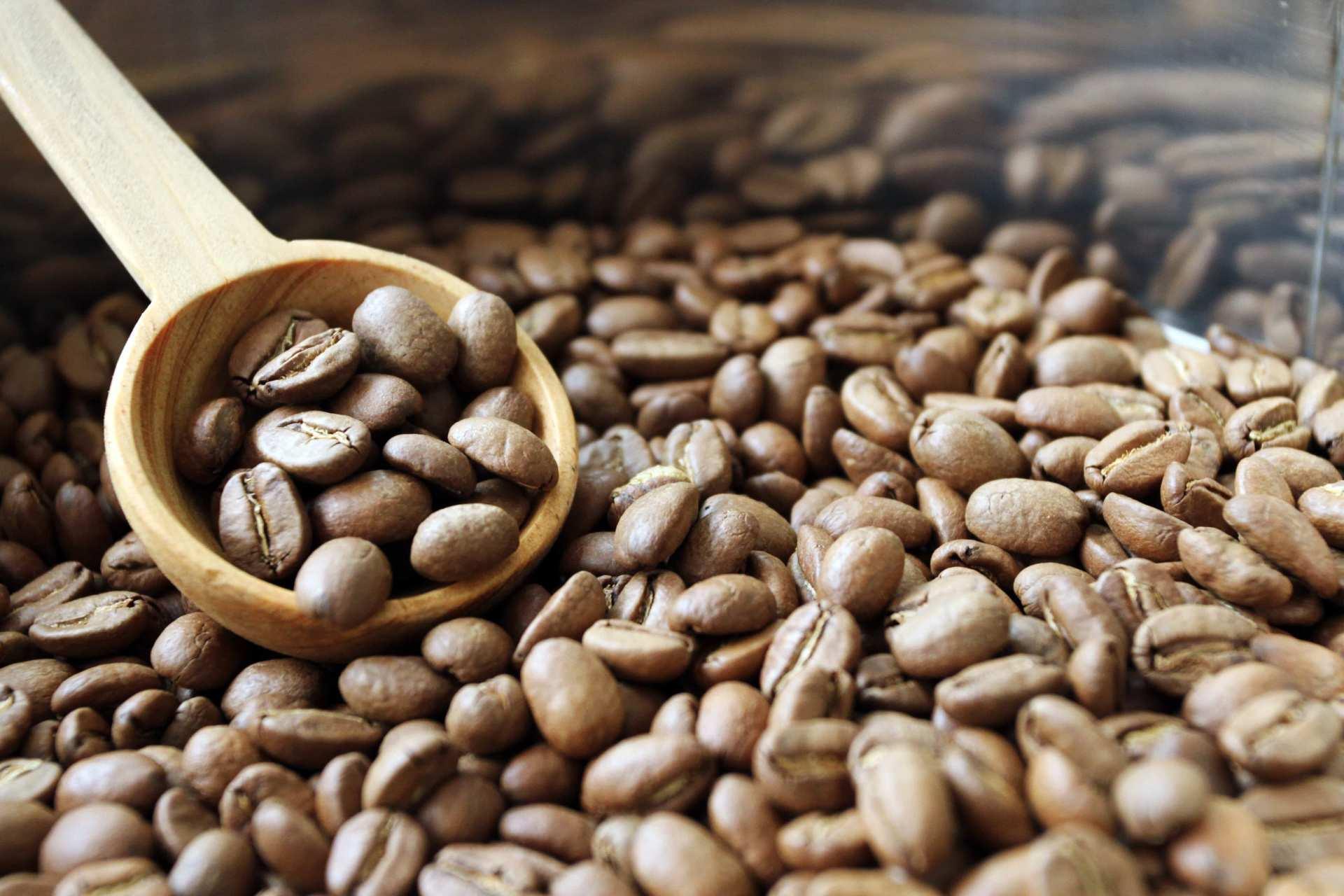【台灣在地小農食材手做】樹合苑・搖滾烘豆+手沖咖啡