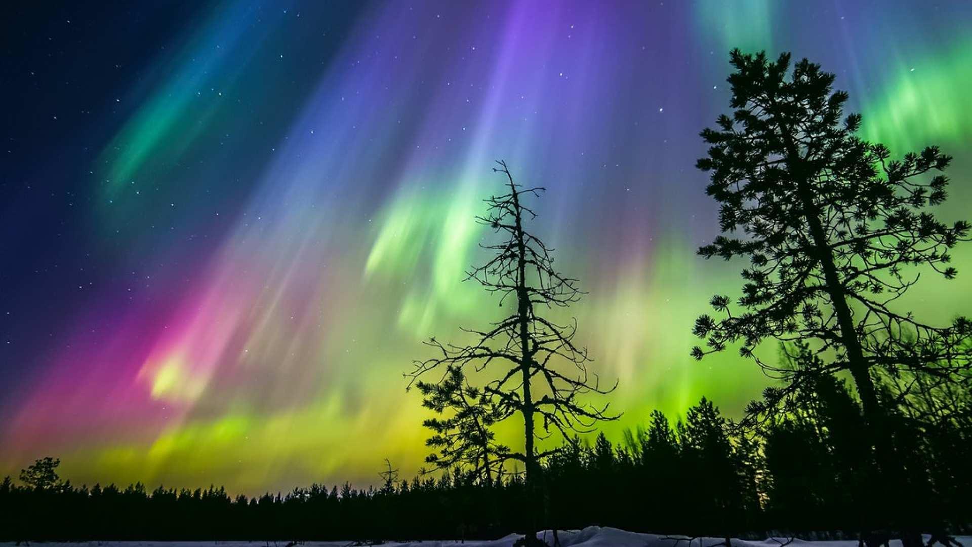 【芬蘭蒸桑拿賞極光】羅瓦涅米極光追尋+湖畔傳統芬蘭桑拿+拉普蘭特色小吃
