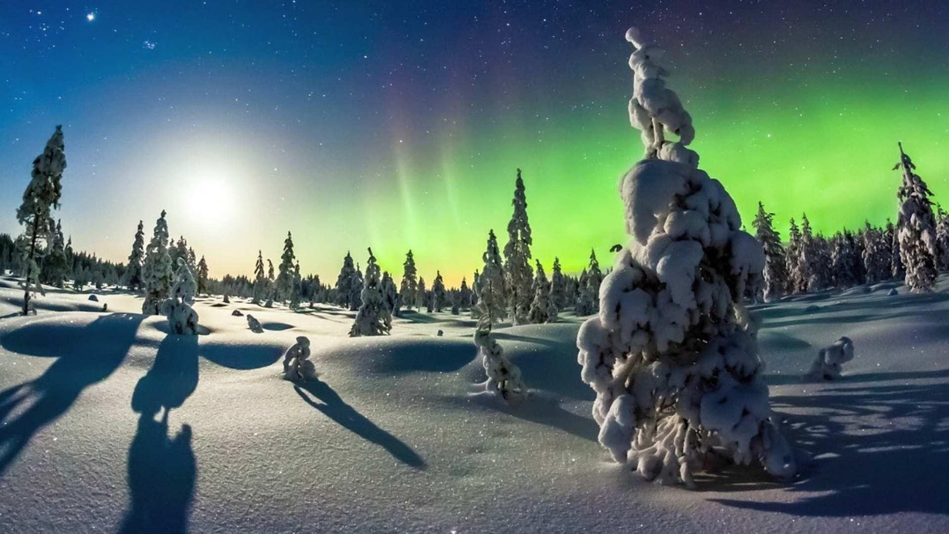 【芬蘭搭乘馴鹿雪橇賞極光】北極拉普蘭馴鹿雪橇體驗+拜訪馴鹿牧場+薩米小吃半日遊
