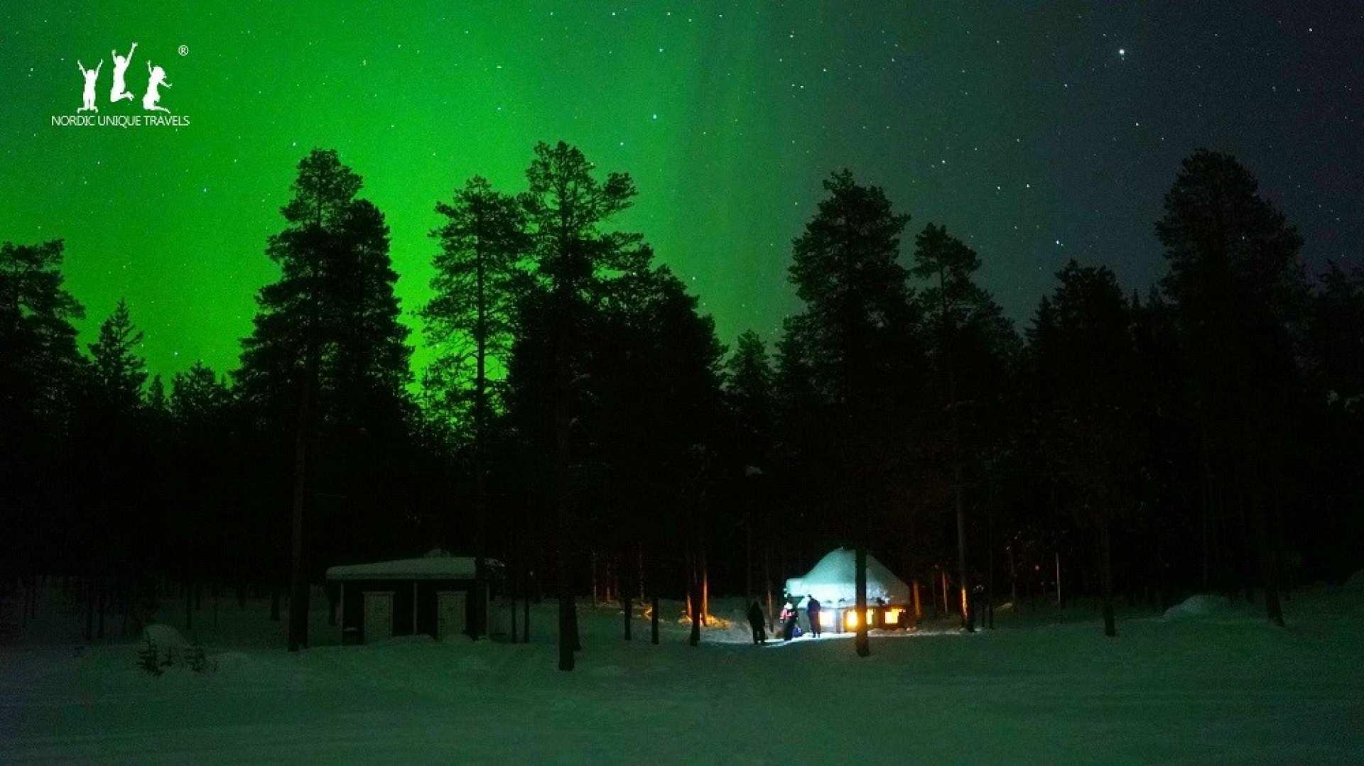 【芬蘭北極光追尋之旅】羅瓦涅米森林踏雪+享用極光野餐