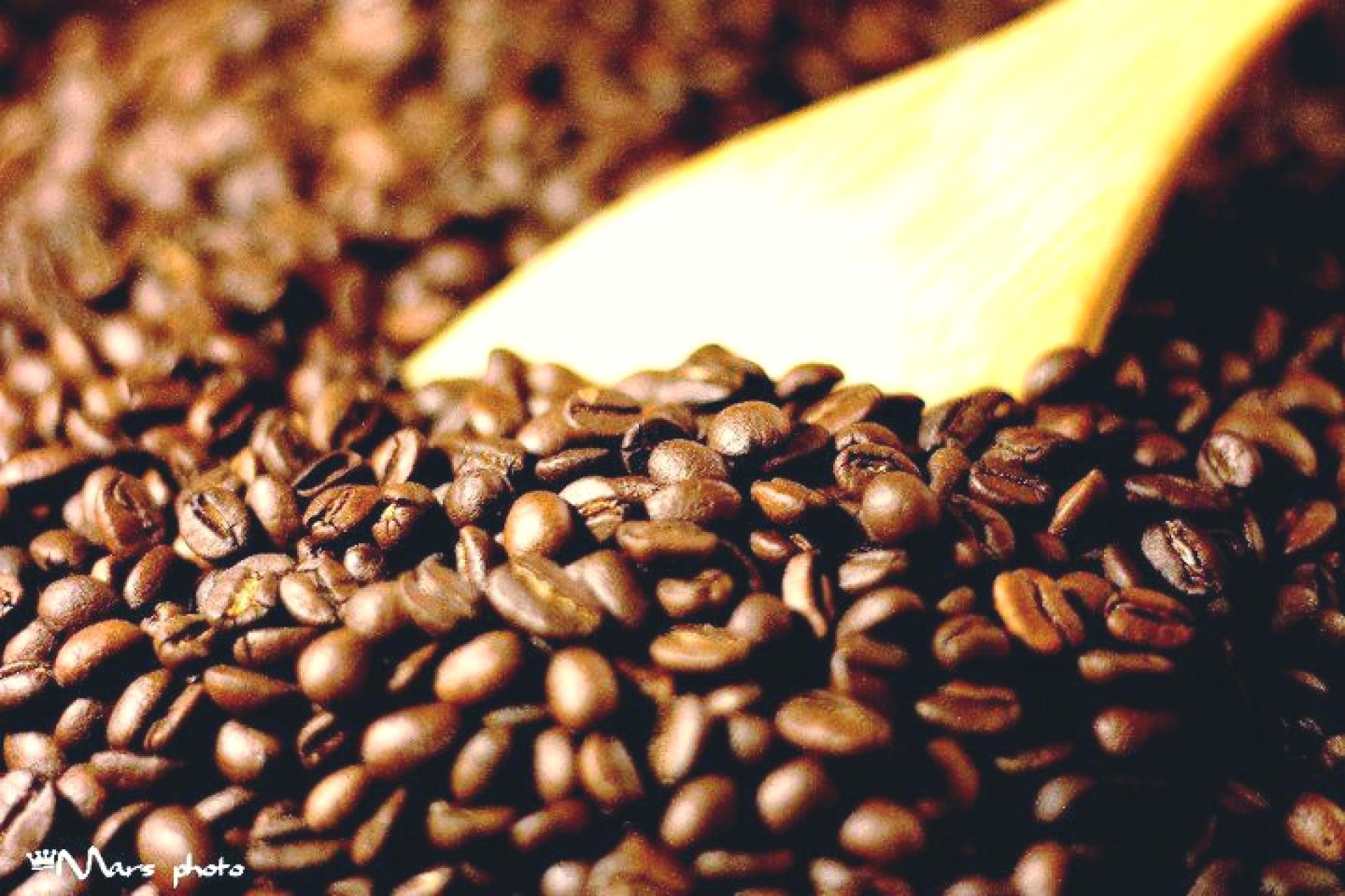 【台南咖啡體驗】古根文旅手烘咖啡豆體驗教學+現烘咖啡品嘗