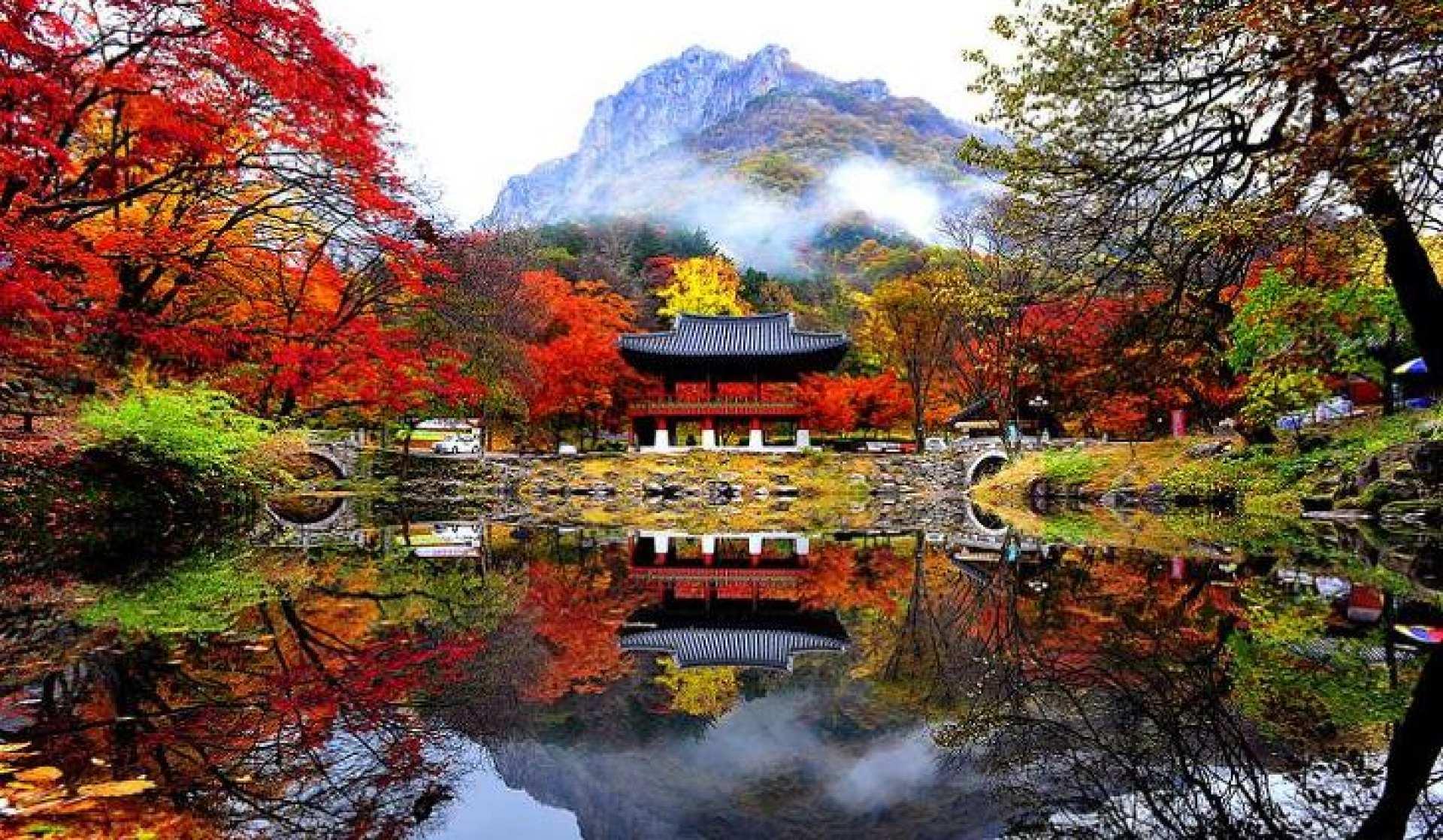 【ソウル発】韓国で紅葉狩り!韓国の名山・内蔵山1日ツアー