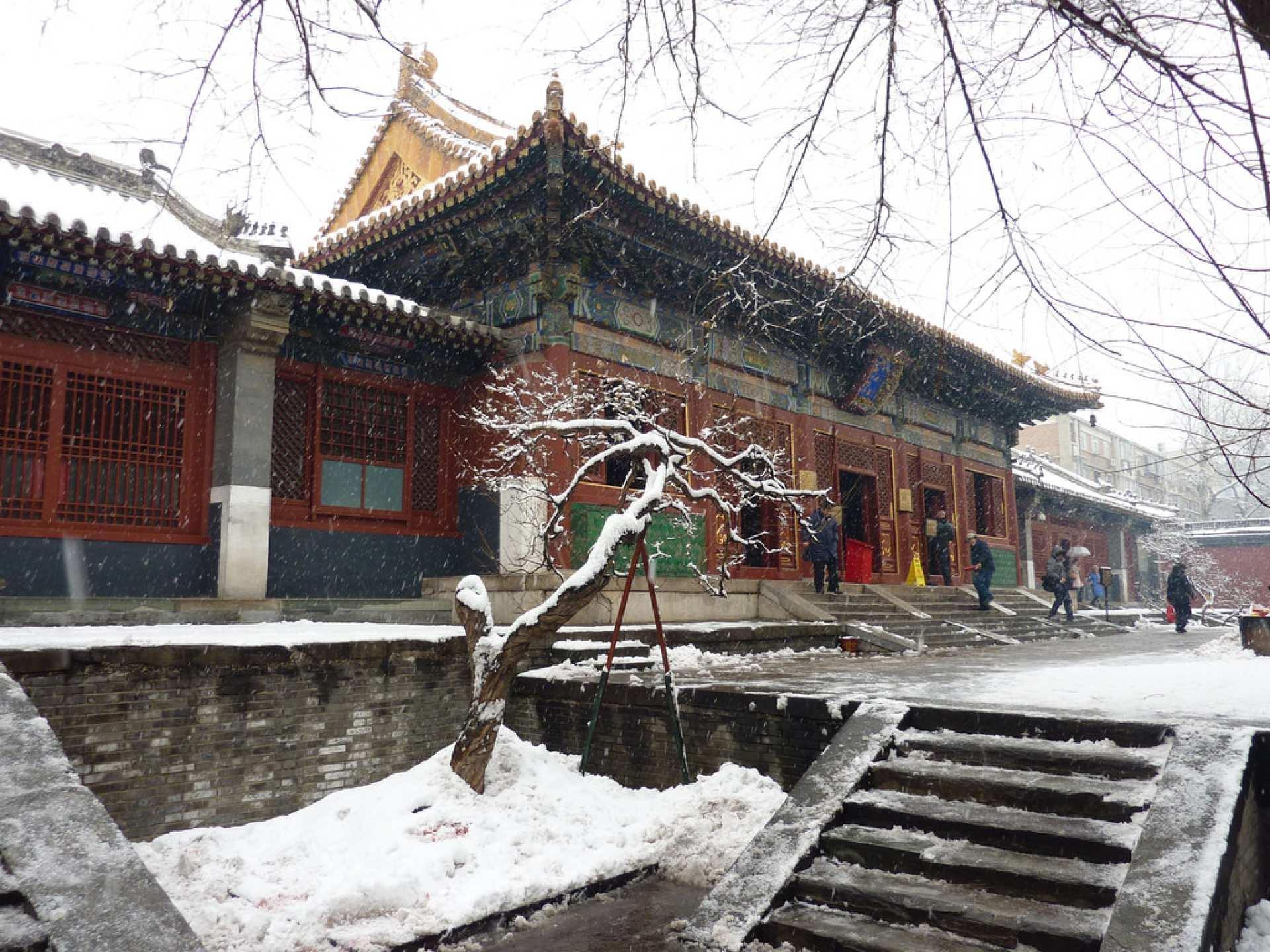 【北京名寺古剎之旅】白雲觀、雍和宫、戒台寺包車一日遊