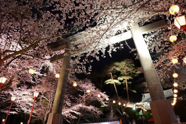 【【日光交通必備】東武鐵道日光周遊券 Nikko Pass