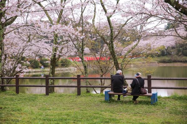 【【九州巴士一日遊】湯布院、黑川溫泉(福岡出發)