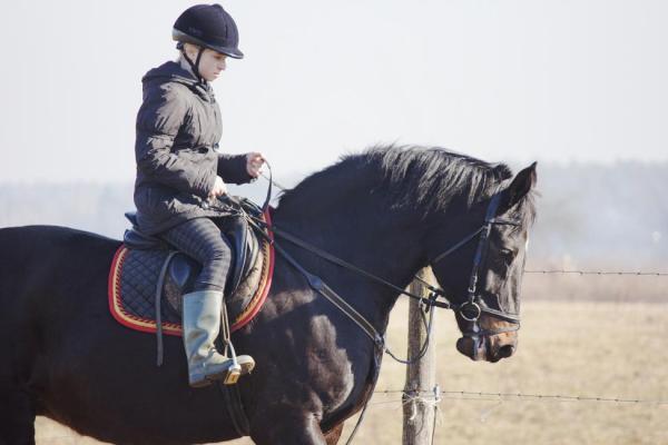 【【墾丁陸上活動】墾丁南灣野外馬場教學體驗