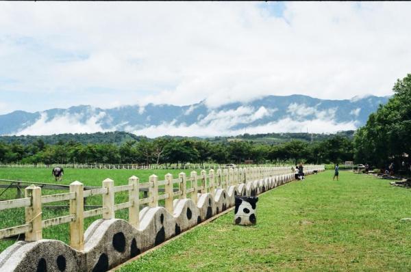 【【一覽田園縱谷風光】花東縱谷森林美景拼車一日遊