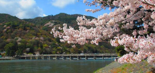 【【京都巴士一日遊】嵐山散步・金閣寺・伏見稻荷大社