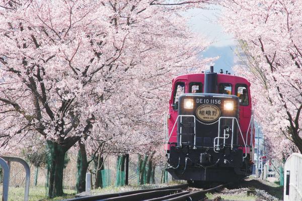 【【京都一日遊】嵯峨野嵐山小火車、清水寺、伏見稻荷大社