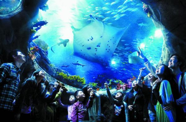 【【香港必玩景點】香港海洋公園電子門票