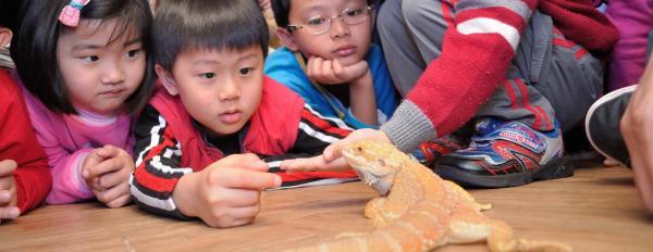 【【大自然親子遊】台灣昆蟲館親子生態導覽體驗