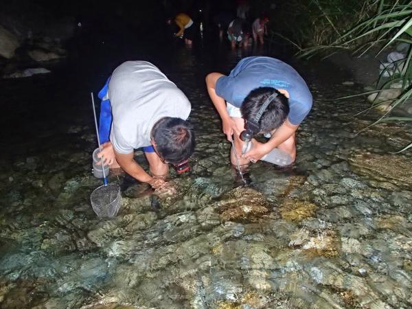 【【花蓮晚上抓蝦去】花蓮夜間抓溪蝦體驗(含免費接駁)