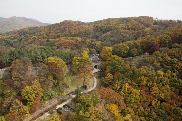 【【EG京畿道循環巴士】南漢山城、和談林、利川陶藝村一日遊