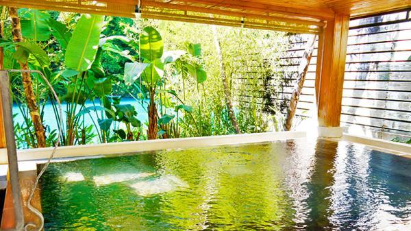 【【台北露天溫泉酒店】烏來馥蘭朵日式大浴場+小籠包輕食套餐