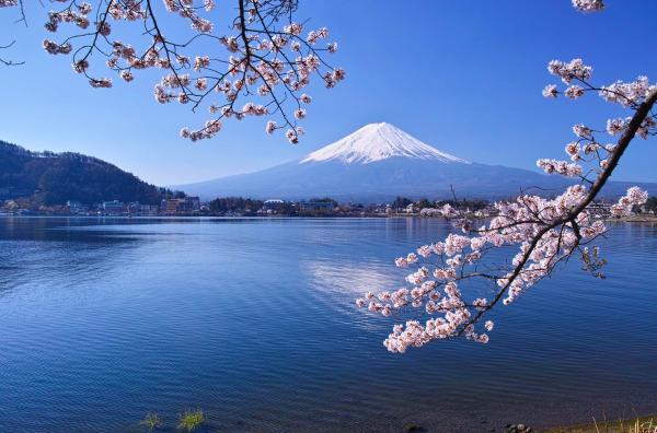 【【富士山一日遊】富士山、河口湖、忍野八海、御殿場 Outlet