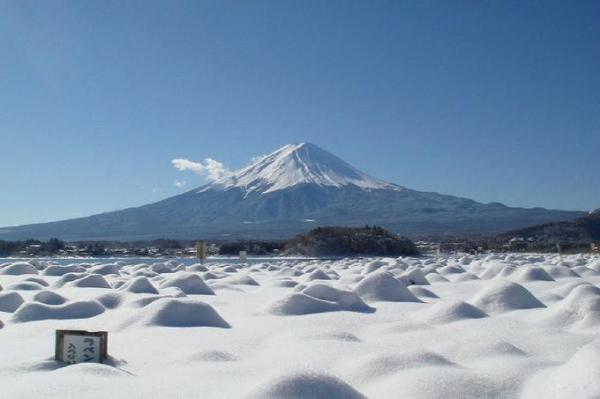 【【東日本鐵道假期】富士山・河口湖觀光巴士一日遊(內含JR東京廣域3日券)