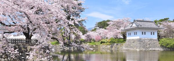 【【東京巴士一日遊】箱根海盜船、小田原城、大涌谷、蘆之湖(保證有位)