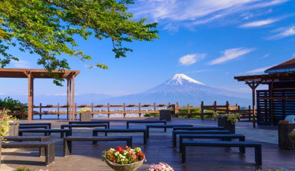 【【東京巴士一日遊】三島大吊橋・富士見露台・新鮮草莓吃到飽