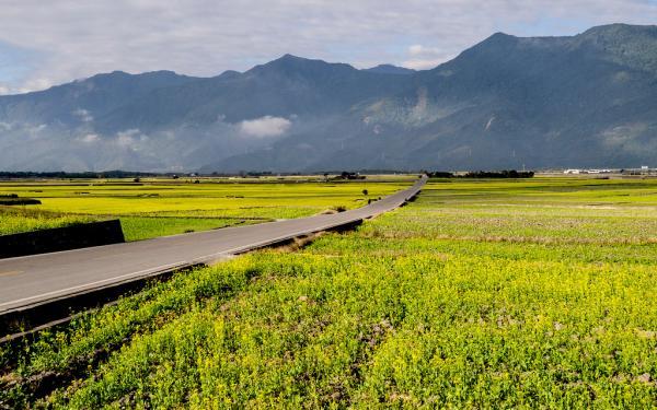 【【包車暢遊花東縱谷或東海岸線】花蓮台東雙向出發