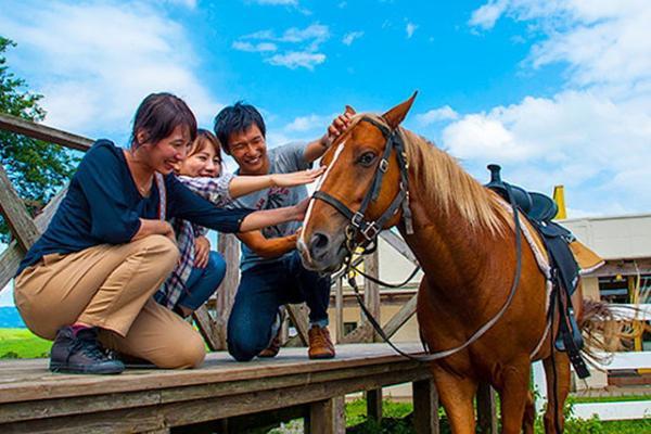 【【熊本・阿蘇・騎馬】騎馬體驗!眺望大自然的山景!