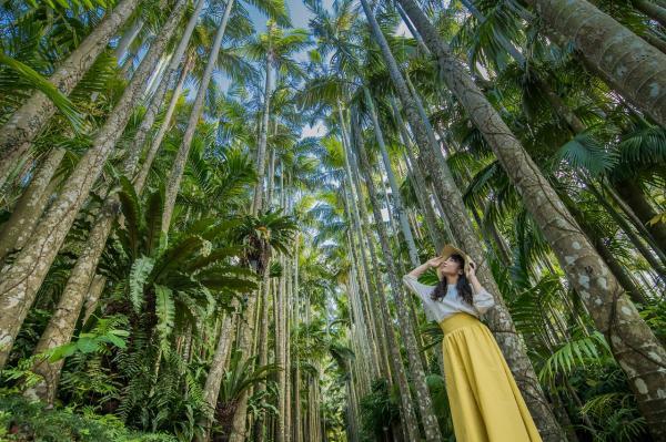 【【沖繩特色景點】東南植物樂園門票