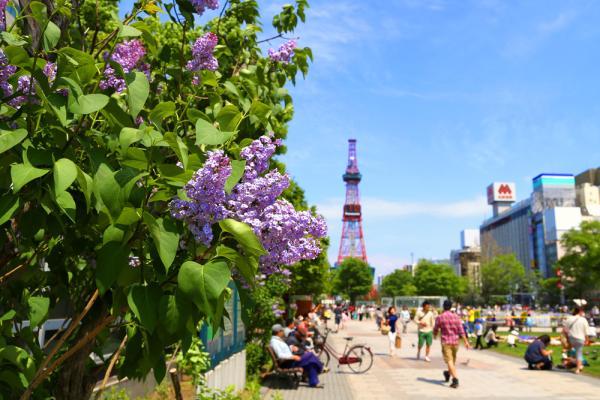【【超值特賣】全日空機票加酒店套餐(東京出發札幌往返)