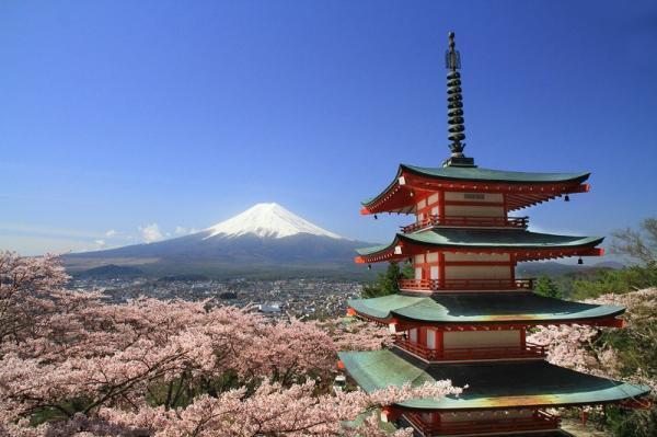【【東京至飛驒高山單程巴士券】富士山・長野諏訪湖一日遊