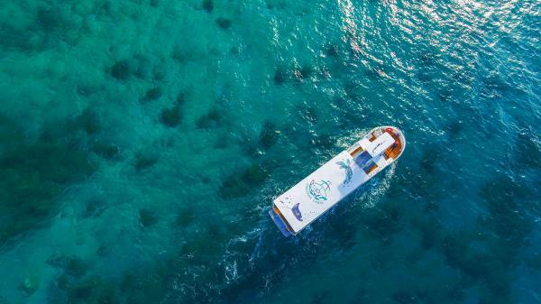 【【輕鬆欣賞海底世界】 小琉球玻璃船半潛艇體驗