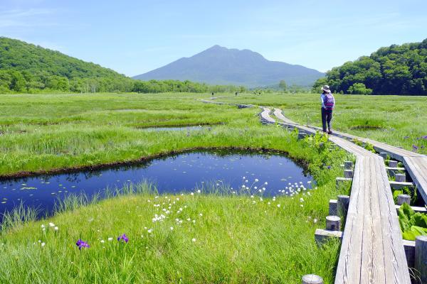 【【日本絕景】尾瀨國立公園・尾瀨之原濕地健行