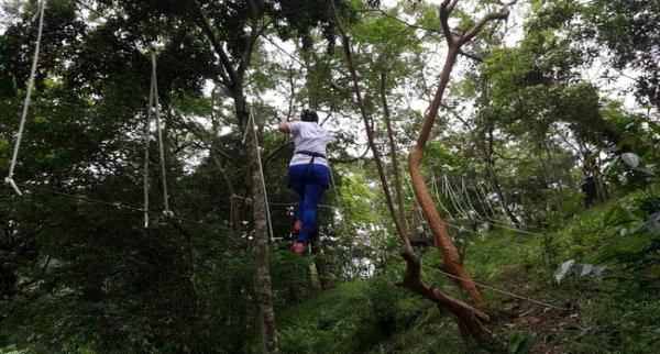 【【花蓮戶外運動】樹冠層探險 (叢林飛躍)