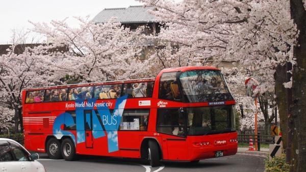 【【京都觀光巴士】隨你坐觀光巴士 Sky Hop Bus