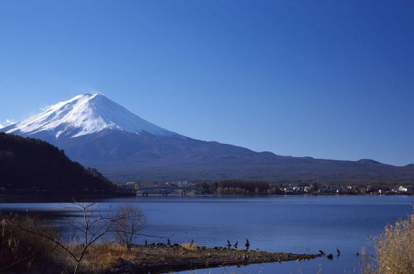 【【富士山一日遊】五合目、河口湖、天上山纜車、採摘時令水果