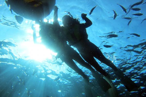 【【沖繩中部】青之洞窟浮潛體驗(中文翻譯&免費攝影)