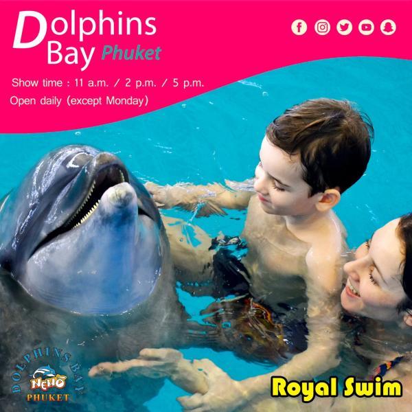 【普吉島海生館】尼莫海豚館 Dolphins Bay Phuket 表演門票