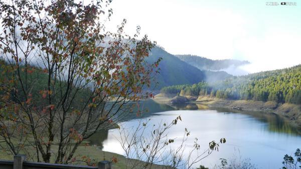 【【來到宜蘭踏踏青】宜蘭太平山森林秘境一日遊