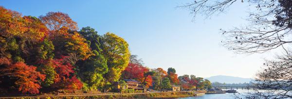 【【京都奈良一日遊】京都嵐山、金閣寺、奈良公園